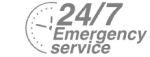 24/7 Emergency Service Pest Control in Kensal Green, NW10. Call Now! 020 8166 9746