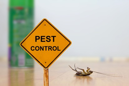 Pest Contol in Kensal Green, NW10. Call Now 020 8166 9746